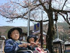 桜と一緒に