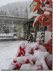 2012H241114 初雪
